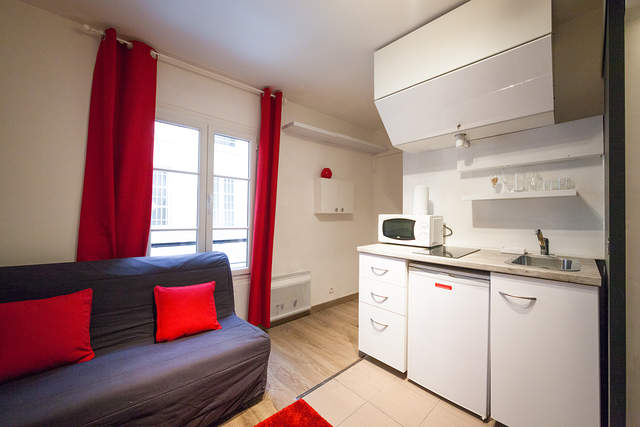 Living room with sofa bed for two people - Apartment Saint-Denis